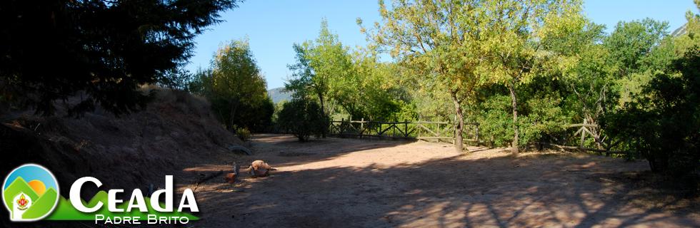 CEADA – Centro Ambiental da Arrábida P.e Alfredo Brito