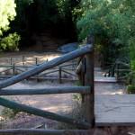 Escadaria dos Socalcos